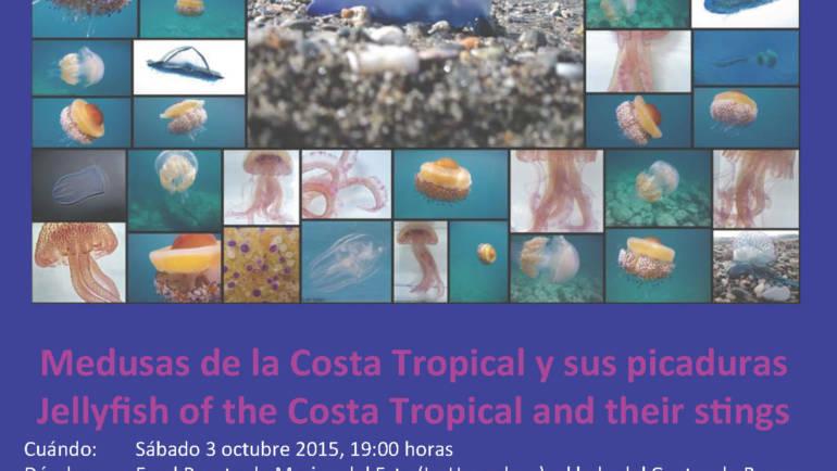 Charla sobre medusas en la Costa Tropical y sus picaduras