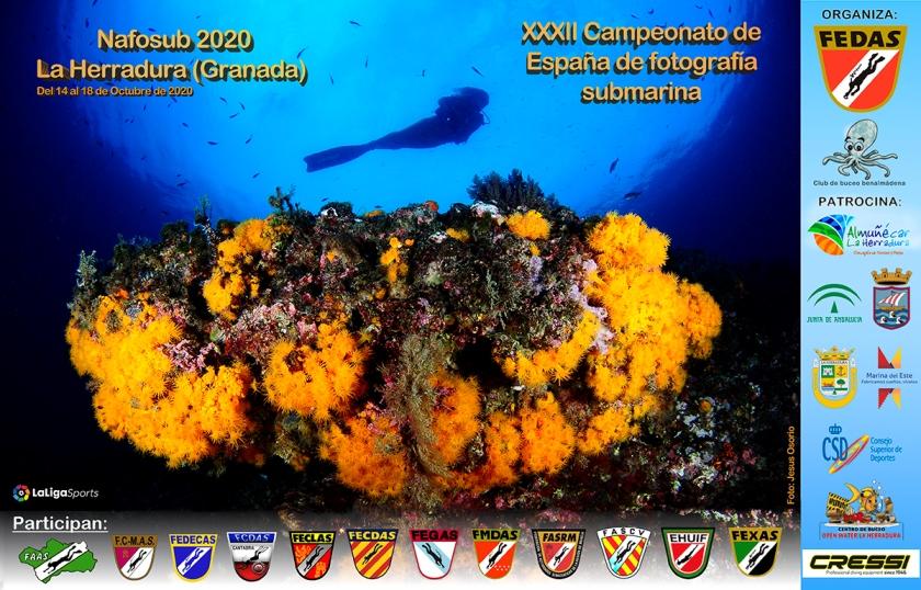 El XXXII Campeonato de España de Fotografía Subacuática se celebra del 14 al 18 de octubre