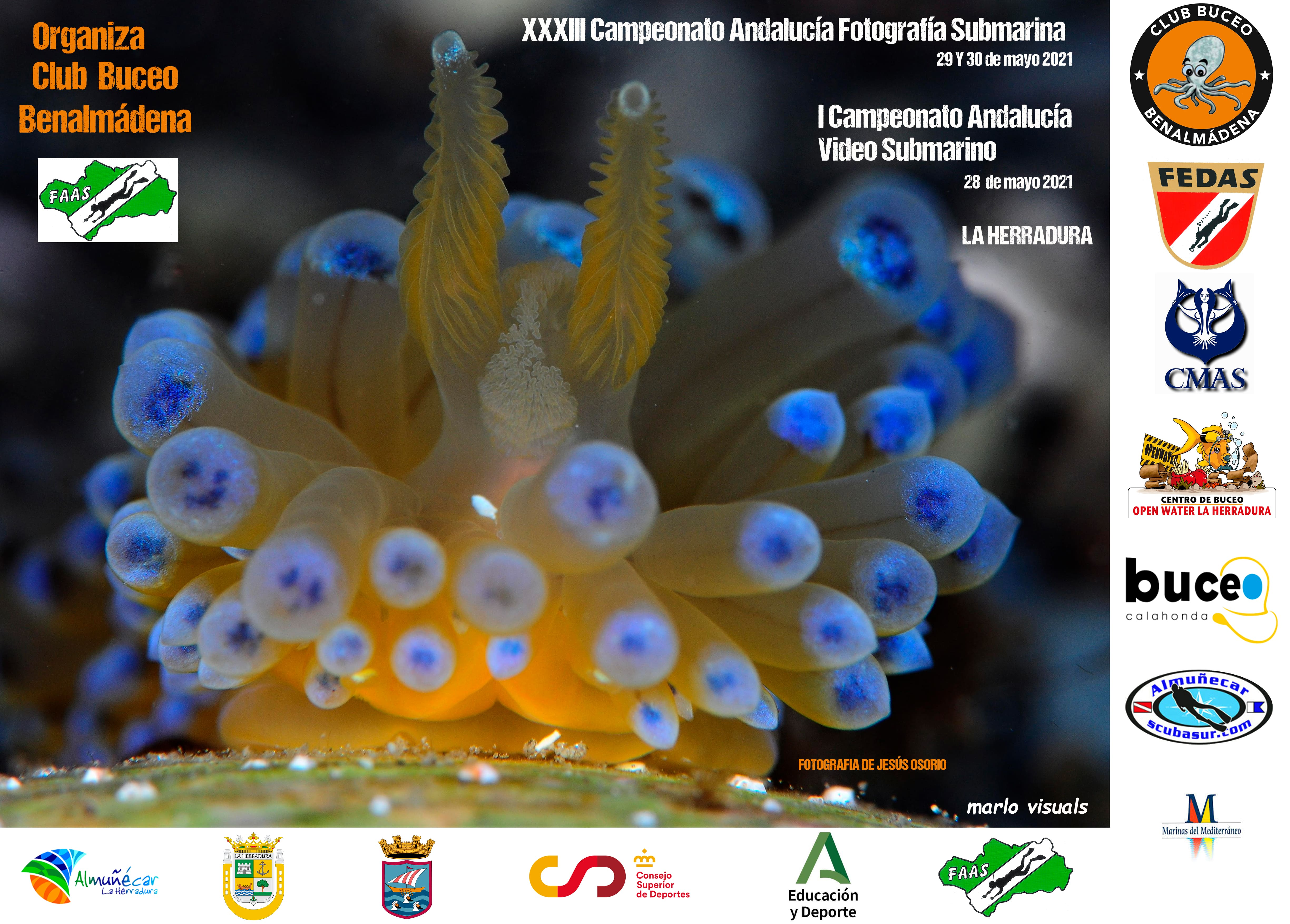 XXXIII Andalusian Underwater Photography Championship 2021 and I Underwater Video Championships 2021.