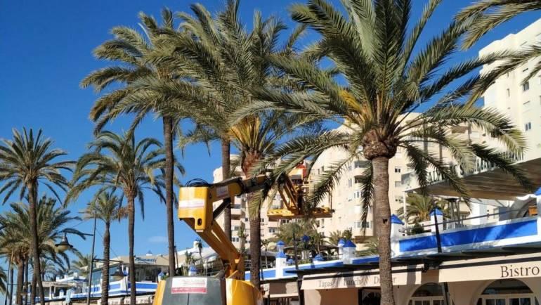 Marinas del Mediterráneo continúa adecentando sus puertos de cara a la temporada alta