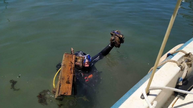 Limpieza de fondos marinos en el Puerto Deportivo de Estepona
