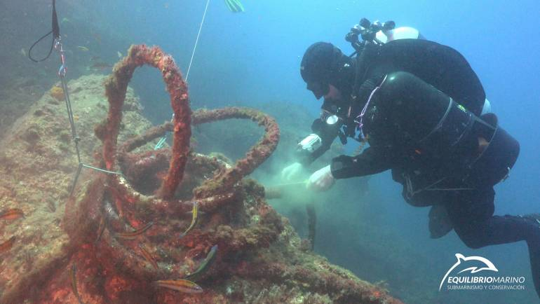 Mediterranean Marinas collaborates with SOS CORALES, a pioneering marine recovery project in Spain