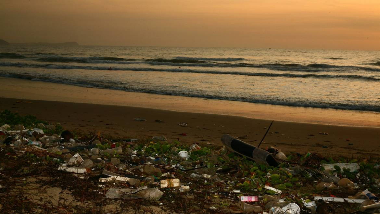 Möchten Sie dem Citizen Decalogue gegen Meeresmüll beitreten??