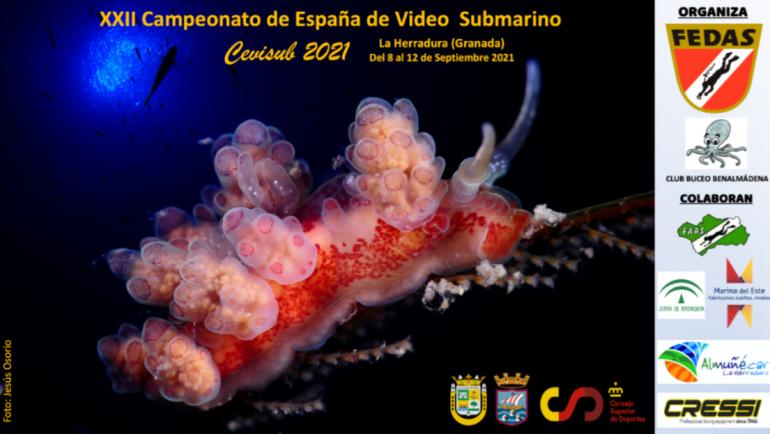 La Herradura acoge del 8 al 12 de septiembre el XXII Campeonato de España de Vídeo Submario