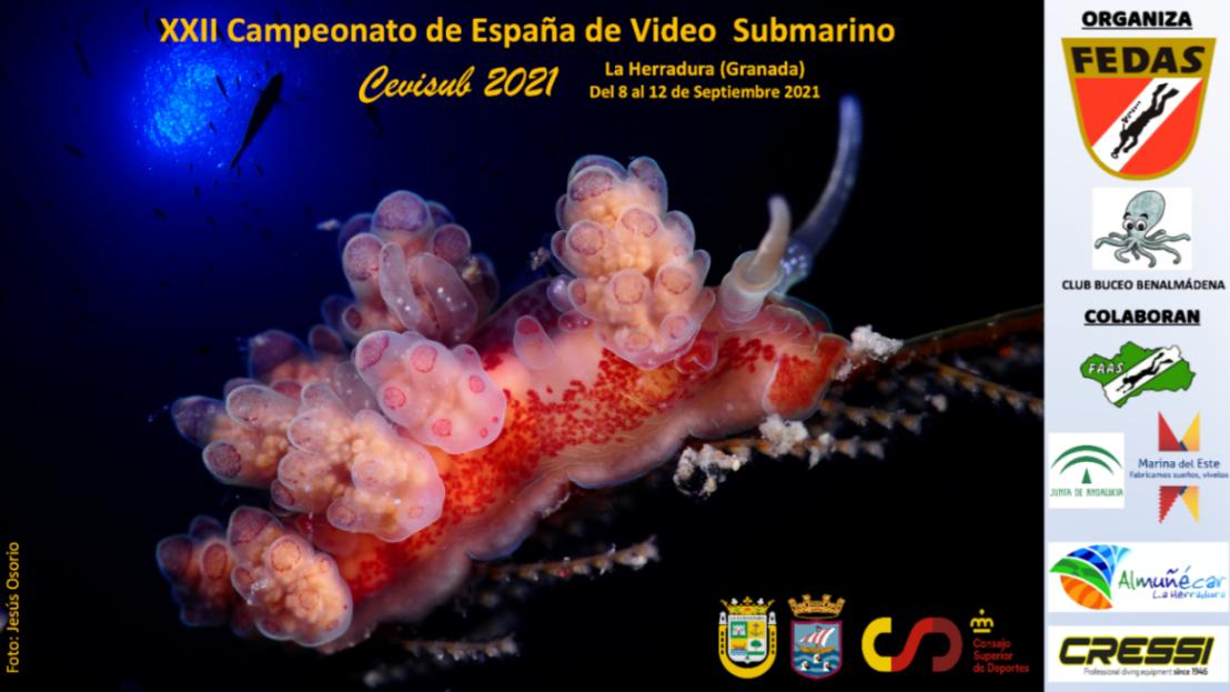 La Fer à cheval accueille le 8 à la 12 septembre le XXIIe Championnat d'Espagne de Vidéo Submario